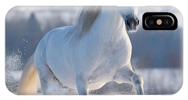 Purebred iPhone Case - Gray Welsh Pony Galloping On Snow Hill by Abramova Kseniya