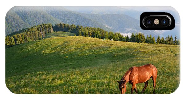 Spring Mountains iPhone Case - Grazing Horse On Mountain Pasture by Brum
