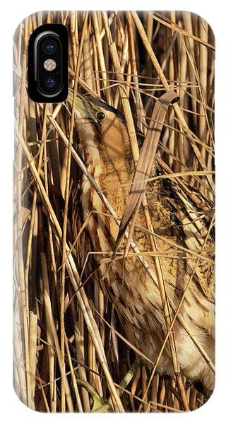 IPhone Case featuring the photograph Great Bittern by Thomas Kallmeyer