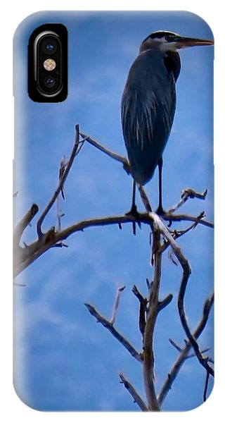 Great Blue Heron 3 IPhone Case