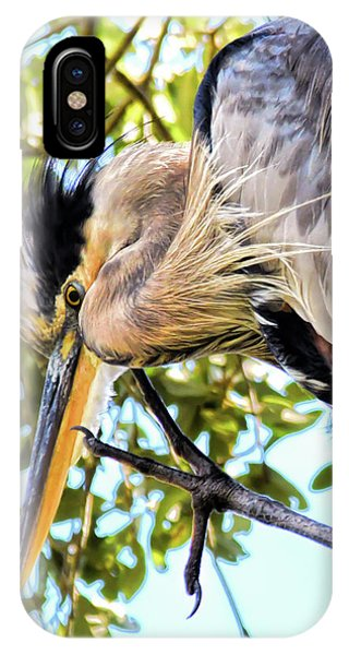 Great Blue Heron Close Up IPhone Case