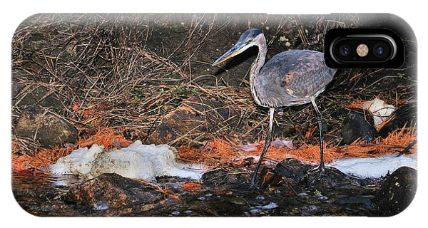 IPhone Case featuring the photograph Great Blue Heron by Debbie Stahre