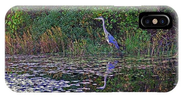 Great Blue Heron In Autumn IPhone Case