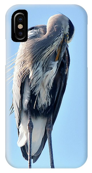 Great Blue Heron Preening On A Roof IPhone Case