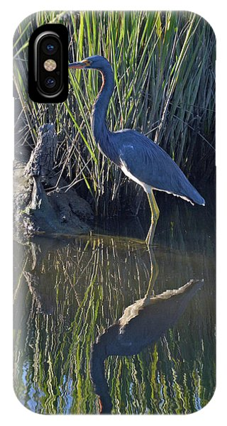 Great Blue Heron Reflecting IPhone Case