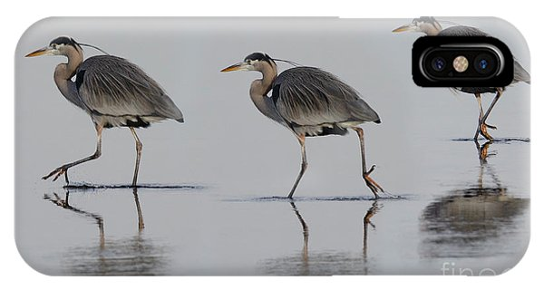 iPhone Case - Great Blue Heron On The Prowl by Bob Christopher