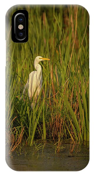 Horicon Marsh iPhone Case - Great Egret 2019-2 by Thomas Young