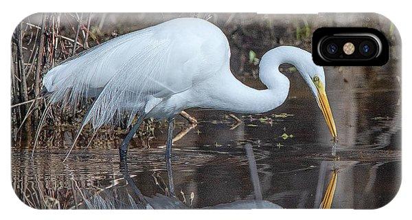 Great Egret In Breeding Plumage Dmsb0154 IPhone Case