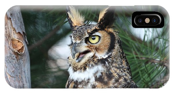 Great Horned Owl 5151801 IPhone Case