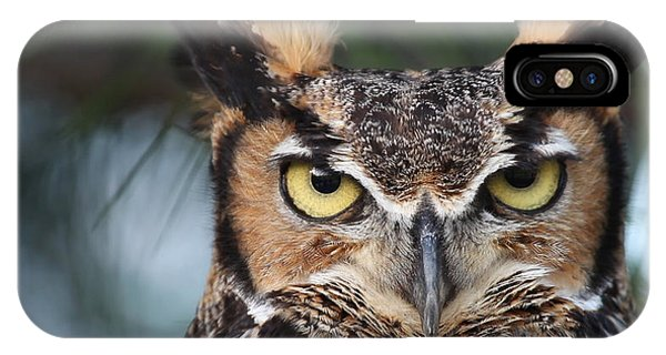 Great Horned Owl Eyes 51518 IPhone Case