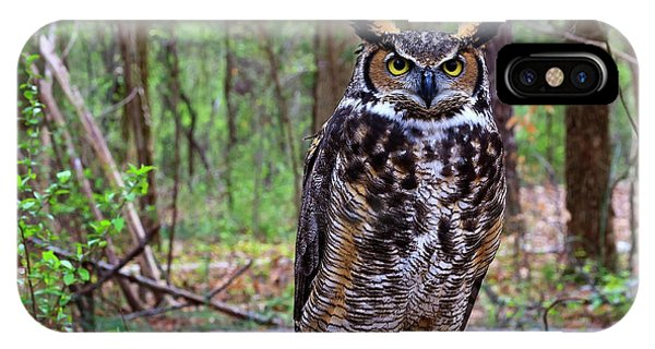 Great Horned Owl Standing On A Tree Log IPhone Case