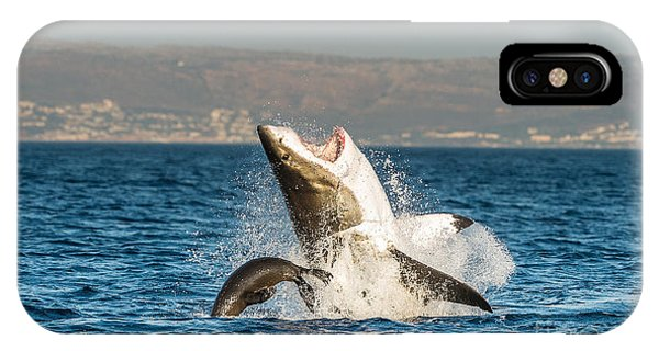 Fins iPhone Case - Great White Shark  Carcharodon by Sergey Uryadnikov