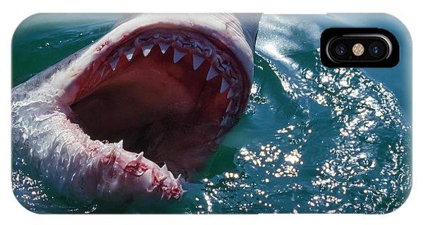 Great White Shark, Near Gansbaii, South Phone Case by Stuart Westmorland