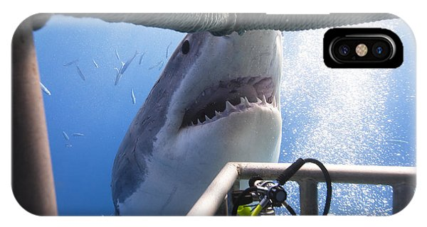 Background iPhone Case - Great White Shark Showing Its Teeth In by Visiondive