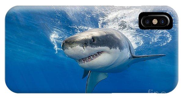 Great White Shark Swimming Just Under Phone Case by Wildestanimal