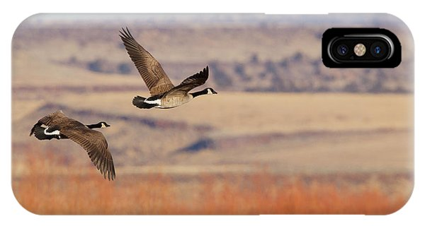 Canada Goose iPhone Case - Greater Canada Geese Flying by Ken Archer