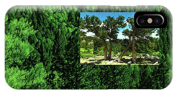 IPhone Case featuring the photograph Green As Ever Forest by Mike Braun