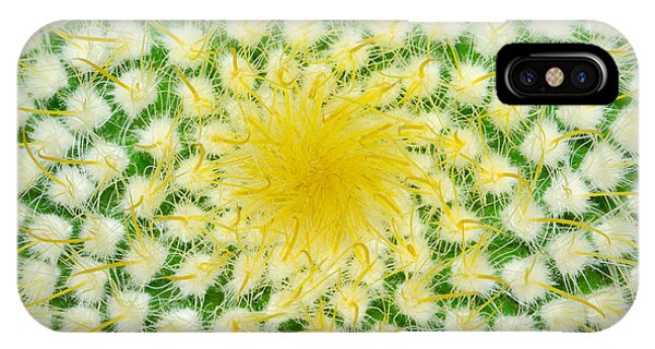 Cacti iPhone Case - Green Cactus And Yellow Prickles by Ruslan Grechka