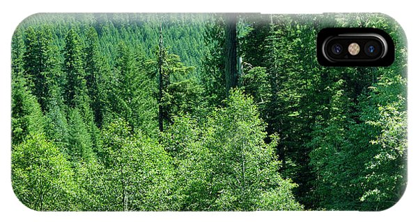 Green Conifer Forest On Steep Hillside  IPhone Case