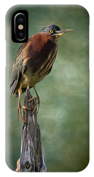 Green Heron Artistic Portrait IPhone Case