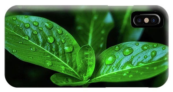 Green Leaf With Water IPhone Case