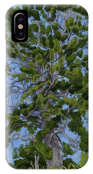 iPhone Case - Green Tree, Hot Day by Alice Ann Barnes