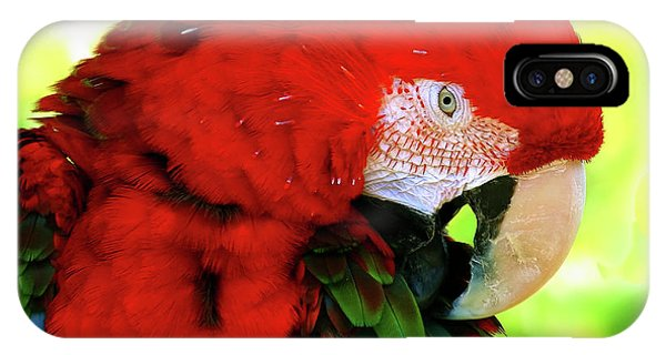 Green-winged Macaw IPhone Case