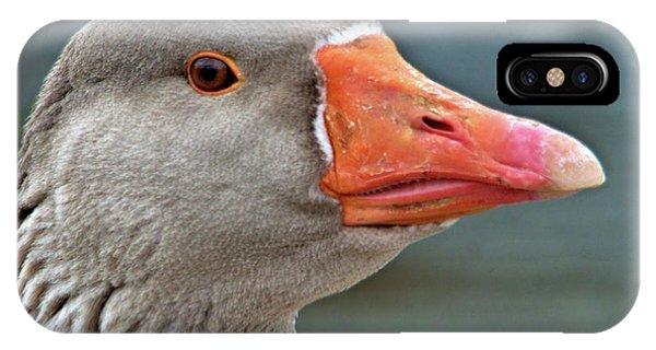 Grey Goose IPhone Case
