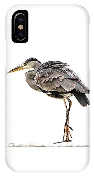 Grey Heron On Snow IPhone Case