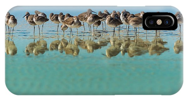 United States iPhone Case - Group Of Willets Reflection On The by Kris Wiktor