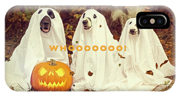 IPhone Case featuring the photograph Halloween Hounds by ISAW Company