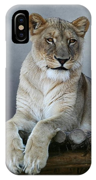 IPhone Case featuring the photograph Happy Lioness by Debi Dalio