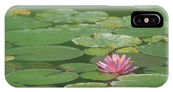 Harmonious Pink Waterlily IPhone Case
