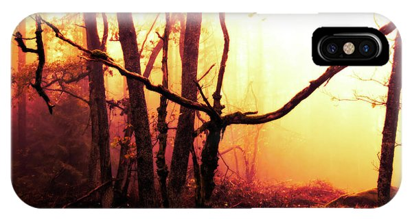 iPhone Case - Haunted Forest In A Mystical Light by Michal Boubin