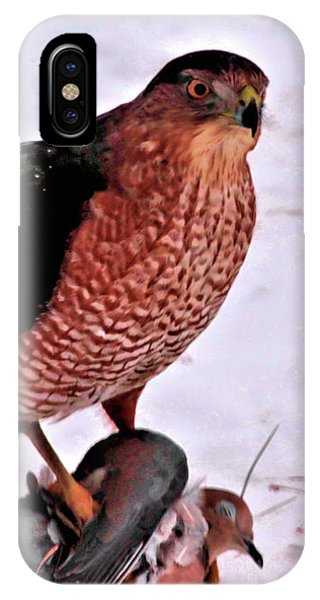 IPhone Case featuring the photograph Hawk Takes Dove by Debbie Stahre