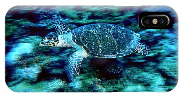Hawksbill Sea Turtle, Maldives Phone Case by Stuart Westmorland