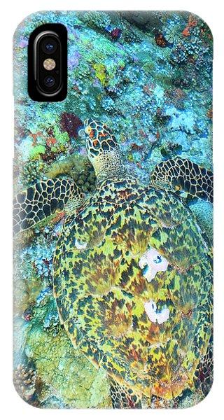 Hawksbill Sea Turtle, North Huvadhoo Phone Case by Stuart Westmorland