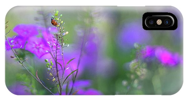 Heartsong In The Meadow IPhone Case