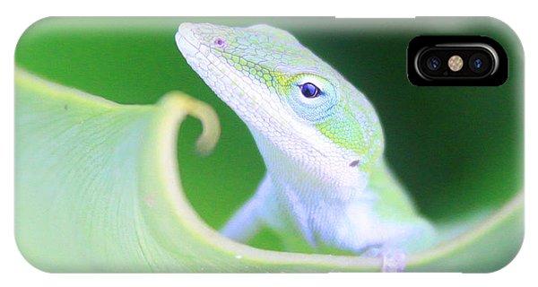 Hello, Anole. 2 IPhone Case