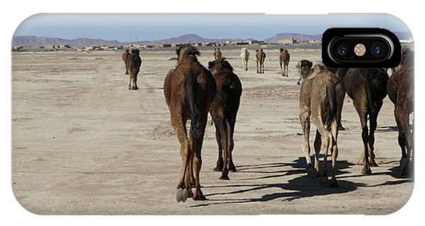 Herd Of Camels Crossing The Highway Near  Rissani IPhone Case