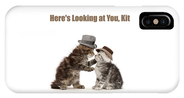 IPhone Case featuring the photograph Here's Looking At You, Kit by Warren Photographic