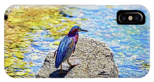 Heron Bluff IPhone Case