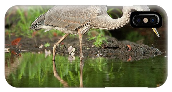 Heron Fishing IPhone Case