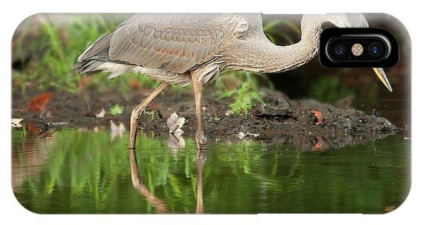 Heron Fishing IPhone Case