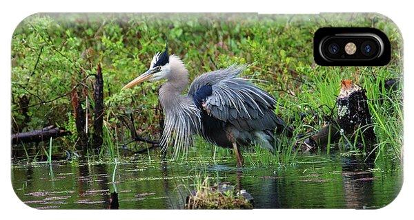 Heron In Beaver Pond IPhone Case