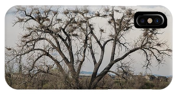 IPhone Case featuring the photograph Heronry by Jon Burch Photography