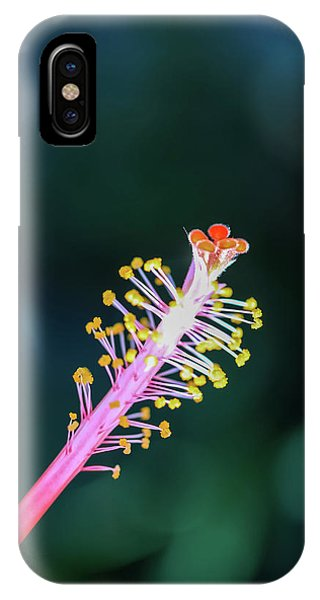 Hibiscus' Pistil IPhone Case