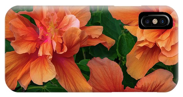 Hibiscus Tripcus Orangus IPhone Case