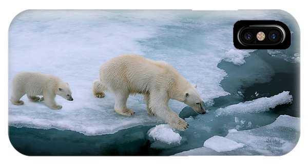 Claws iPhone Case - High Angle Of Mother Polar Bear And Cub by Floridastock