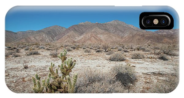High Desert Cactus IPhone Case